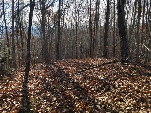 null bed null bath Vacant Land at 0 N/A Bryson City, NC, 28713 is for sale at 202k - 1 of 5