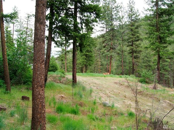 null bed null bath Vacant Land at 204 S Fork Gold Creek Rd Carlton, WA, 98814 is for sale at 60k - 1 of 23
