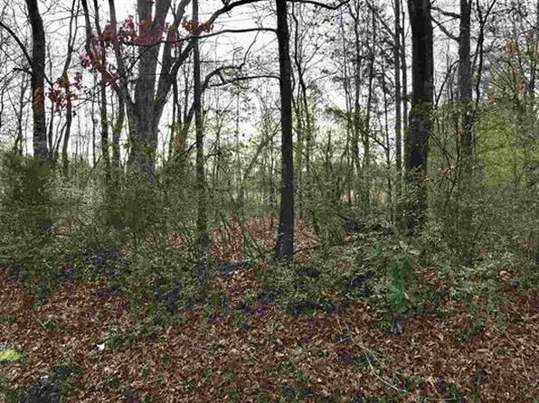 null bed null bath Vacant Land at 0 Peach St Flora, MS, 39071 is for sale at 70k - google static map