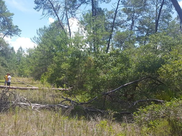 null bed null bath Vacant Land at 5030 W JOLIET LN DUNNELLON, FL, 34433 is for sale at 15k - 1 of 2