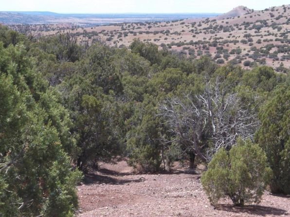 null bed null bath Vacant Land at LOT1 Blk89 Cr Concho Valley, AZ, 85924 is for sale at 10k - 1 of 6