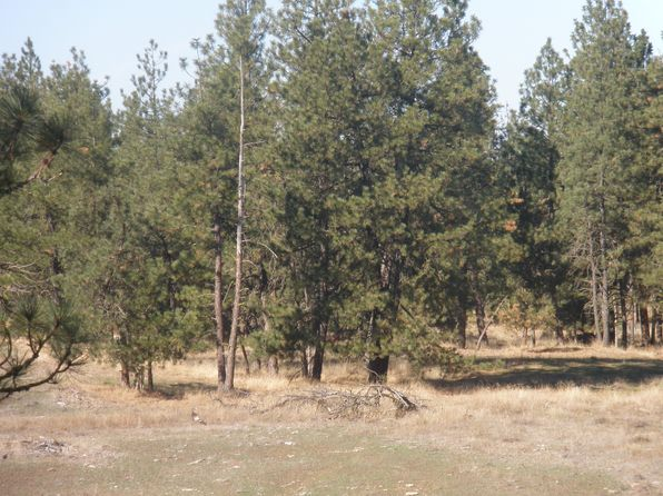 1 bed null bath Miscellaneous at 74 Acres For Sale Spokane, WA, 99022 is for sale at 700k - 1 of 5