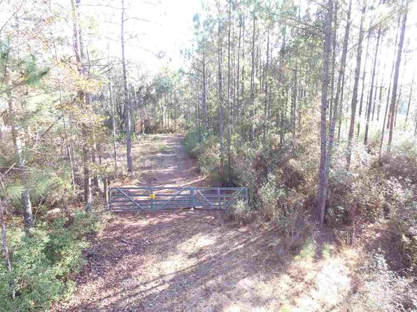 null bed null bath Vacant Land at  Vacant NE Hike Lake Rd Madison County, FL, 32340 is for sale at 207k - 1 of 25