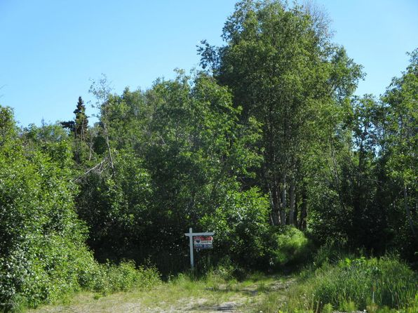 null bed null bath Vacant Land at L4 E 140th Ave Anchorage, AK, 99516 is for sale at 54k - 1 of 6