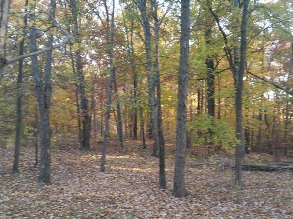 null bed null bath Vacant Land at 000 Pines Rd Goreville, IL, 62939 is for sale at 11k - 1 of 5