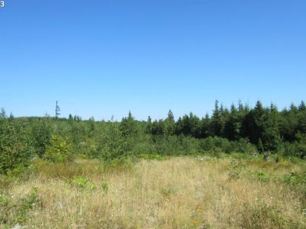 null bed null bath Vacant Land at 40 Silver Rdg Castle Rock, WA, 98611 is for sale at 73k - 1 of 4