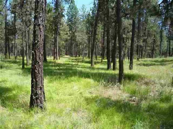 null bed null bath Vacant Land at 12206 S Sherman Rd Spokane, WA, 99224 is for sale at 125k - 1 of 20