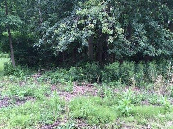 null bed null bath Vacant Land at 0 Petosky Harsens Island, MI, 48028 is for sale at 27k - 1 of 4