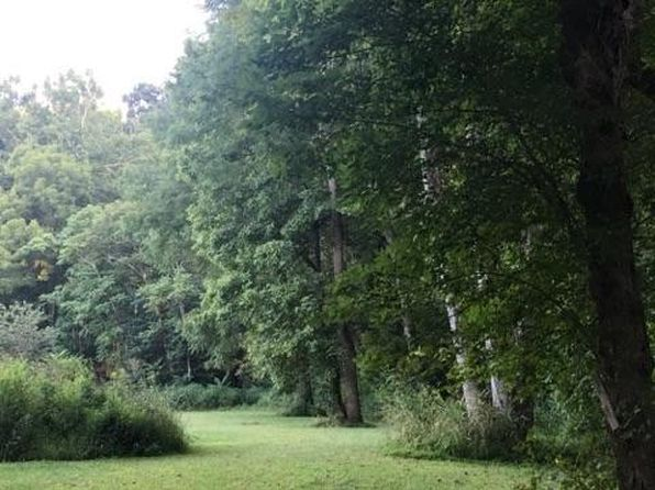 null bed null bath Vacant Land at 4335 Riffe St Elliston, VA, 24087 is for sale at 40k - 1 of 9