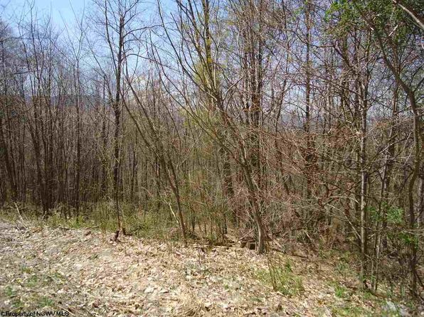 null bed null bath Vacant Land at 2 Stone Camp Meadows Rd Dry Fork, WV, 26263 is for sale at 15k - 1 of 6