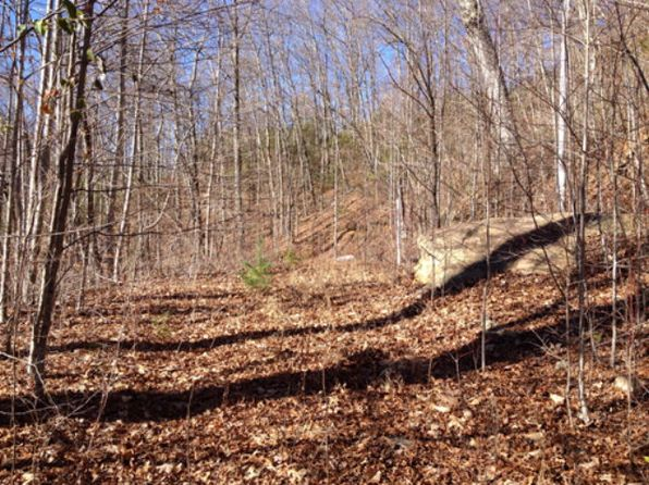 null bed null bath Vacant Land at  Jones Crk Bryson City, NC, 28713 is for sale at 38k - 1 of 7