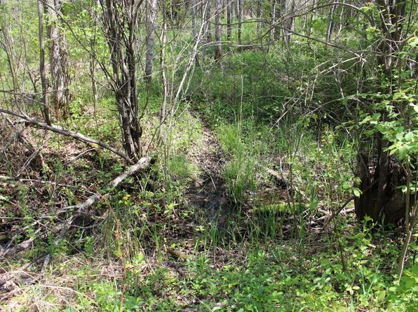 null bed null bath Vacant Land at  County Road 61 Margie, MN, 56658 is for sale at 55k - 1 of 46