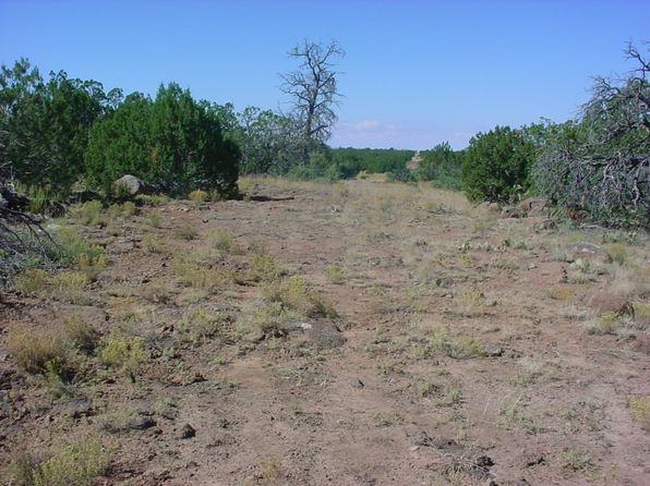 null bed null bath Vacant Land at  Apn 10710113 and 15 Other Lots NE of Show Low, AZ, 85901 is for sale at 4k - 1 of 8
