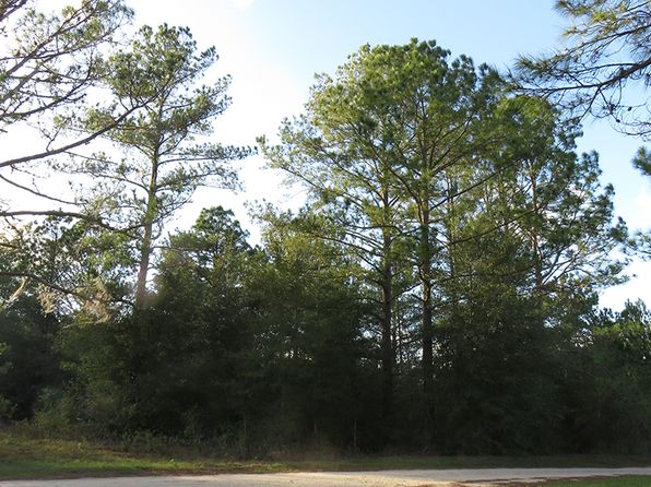null bed null bath Vacant Land at  SE 197th Ave Morriston, FL, 32668 is for sale at 5k - 1 of 20