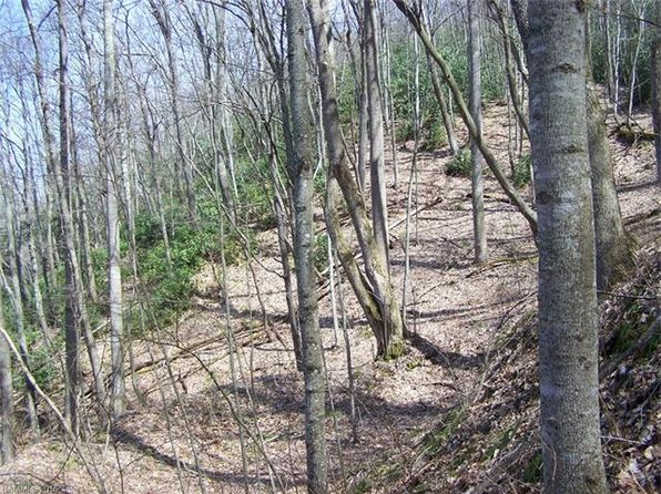 null bed null bath Vacant Land at  Anglers Ridge 4 Waynesville, NC, 28786 is for sale at 10k - 1 of 15
