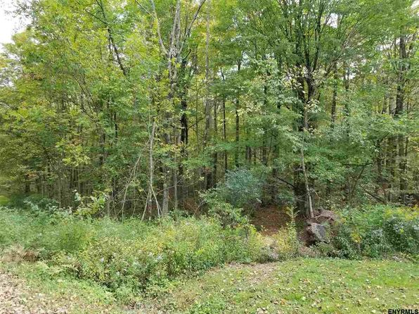 null bed null bath Vacant Land at 4 Churchill Rd New Lebanon, NY, 12125 is for sale at 14k - 1 of 3