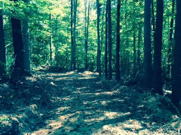 null bed null bath Vacant Land at 26 Ac. of 77 Ac Old Dominion Rd Schuyler, VA, 22969 is for sale at 91k - google static map