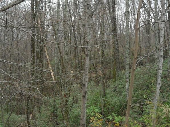 null bed null bath Vacant Land at 158 & 159 Raspberry Ln 158 Clarkesville, GA, 30523 is for sale at 89k - 1 of 2