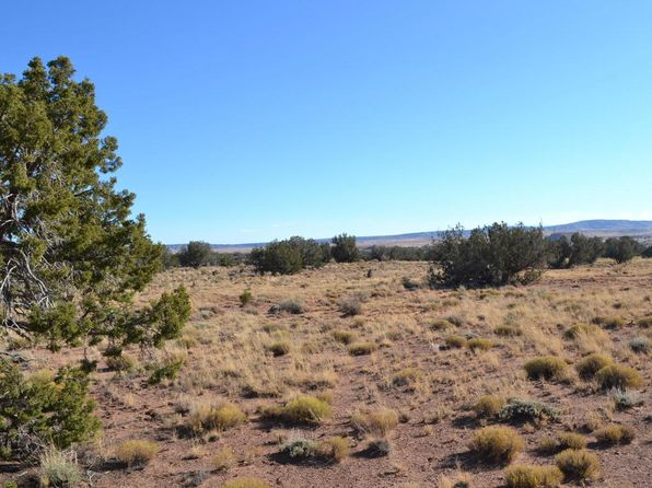 null bed null bath Vacant Land at  Tbd Woodridge Rnch Concho, AZ, 85924 is for sale at 55k - 1 of 21