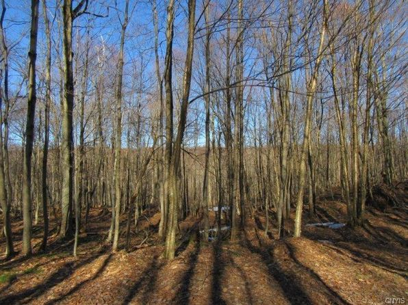 null bed null bath Vacant Land at 509 Jackson Rd Osceola, NY, 13437 is for sale at 80k - 1 of 8
