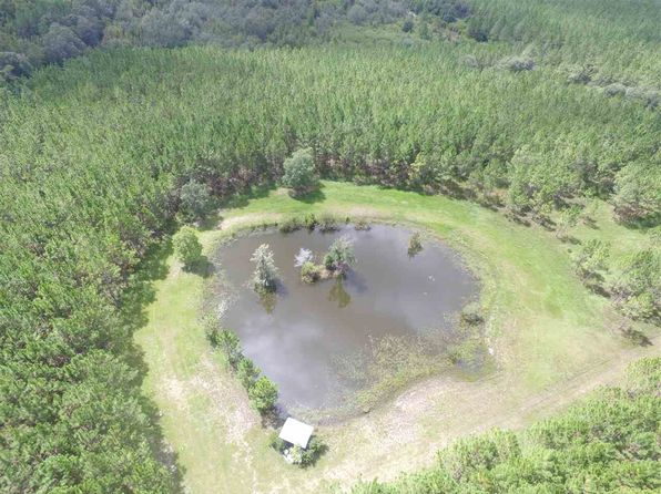 null bed null bath Vacant Land at  Vacant Radcliff Rd Perry, FL, 32348 is for sale at 380k - 1 of 29