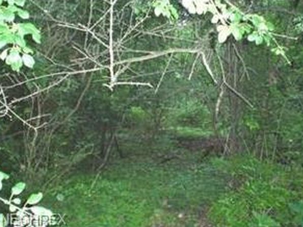 null bed null bath Vacant Land at  Vacant Akron, OH, 44313 is for sale at 3k - google static map