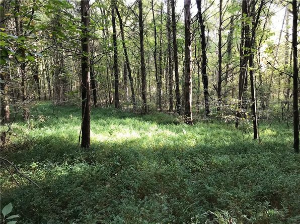 null bed null bath Vacant Land at  Tbd Wilhelm Way Mountainburg, AR, 72946 is for sale at 115k - 1 of 15
