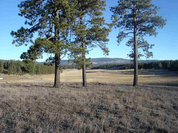 null bed null bath Vacant Land at  Osha Rd Black Lake, NM, 87114 is for sale at 59k - 1 of 7