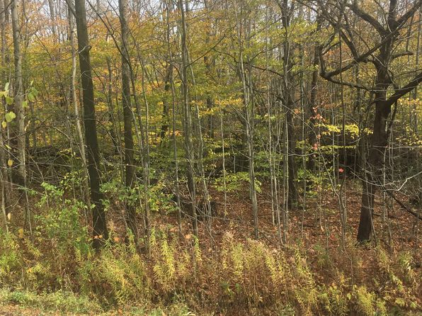 null bed null bath Vacant Land at 12345 VERMONT ST HOLLAND, NY, 14080 is for sale at 50k - 1 of 4