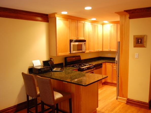 1 bed 1 bath Condo at 431 S Euclid Ave Oak Park, IL, 60302 is for sale at 89k - 1 of 2