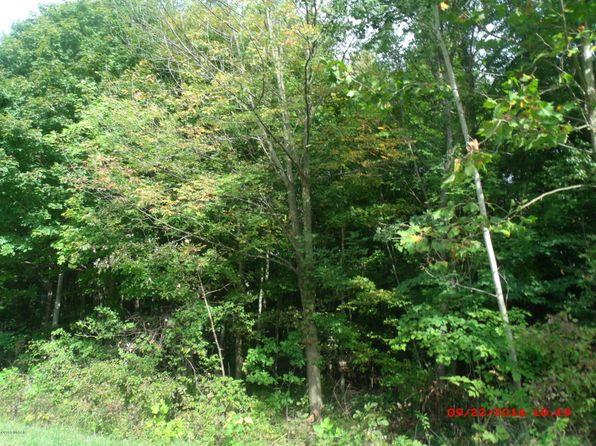null bed null bath Vacant Land at  Parcel C Hartford, MI, 49057 is for sale at 18k - 1 of 2