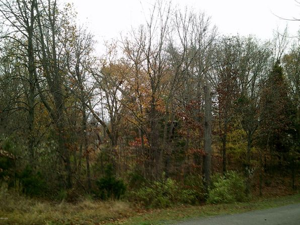 null bed null bath Vacant Land at  Tbd Thunderhead Dr Goreville, IL, 62939 is for sale at 9k - 1 of 5