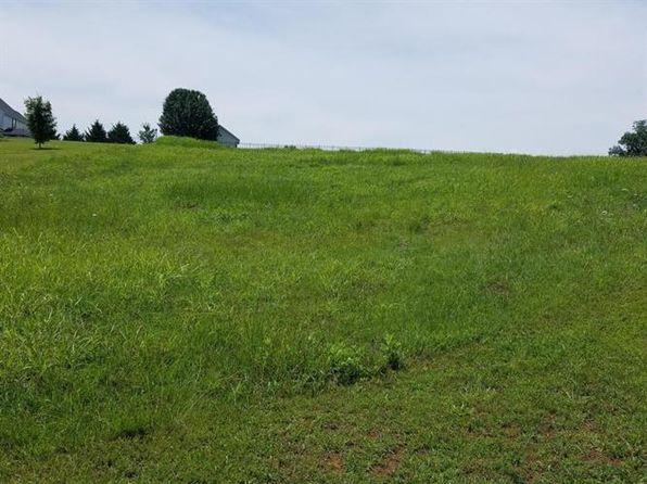 null bed null bath Vacant Land at  Lorne Ln Blaine, TN, 37709 is for sale at 30k - 1 of 4