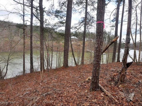 null bed null bath Vacant Land at  Emerald Valley Ests Houston, AL, 35572 is for sale at 40k - 1 of 3