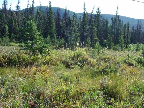 null bed null bath Vacant Land at 000 000 Anchorage, AK, 99516 is for sale at 215k - 1 of 14