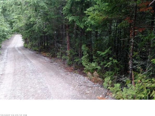 null bed null bath Vacant Land at 0 Loon Cove Rd Northfield, ME, 04654 is for sale at 50k - 1 of 7