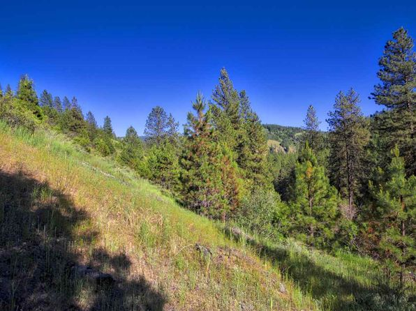 null bed null bath Vacant Land at  McKinley Gulch Idaho City, ID, 83631 is for sale at 250k - 1 of 11