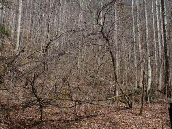 null bed null bath Vacant Land at 5034 Camp Run Rd Cowen, WV, 26206 is for sale at 42k - 1 of 11
