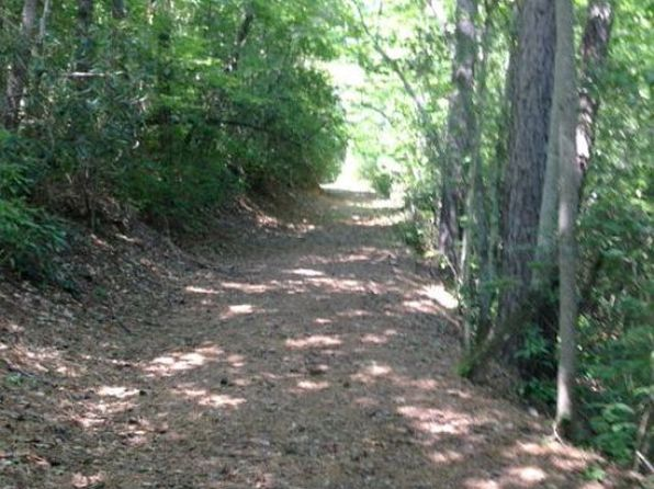 null bed null bath Vacant Land at  Parcel E Tunnel Mountain Rd Sylva, NC, 28779 is for sale at 45k - 1 of 6