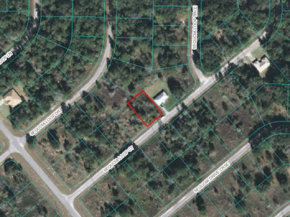 null bed null bath Vacant Land at 00 Sequioa Loop Ct Ocklawaha, FL, 32179 is for sale at 5k - google static map