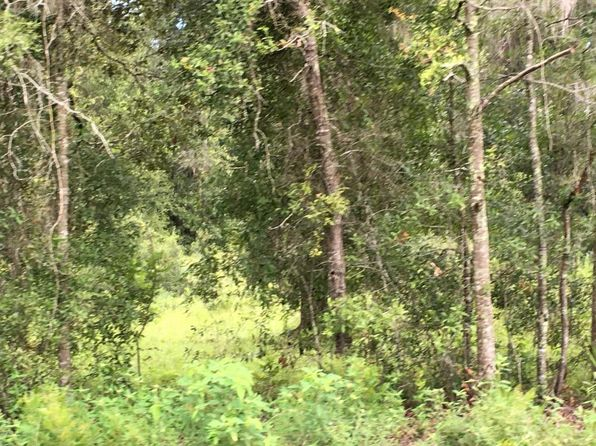 null bed null bath Vacant Land at 0 NE State Rd Archer, FL, 32618 is for sale at 37k - 1 of 3