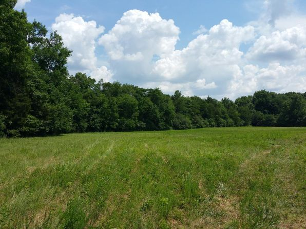 null bed null bath Vacant Land at 1 Feedmill Rd Chapel Hill, TN, 37034 is for sale at 120k - google static map