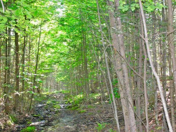 null bed null bath Vacant Land at 094 Walton Rd Morristown, VT, 05661 is for sale at 229k - 1 of 8