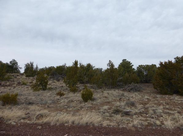 null bed null bath Vacant Land at  Tbd Show Park Pines & Paradise Concho, AZ, 85924 is for sale at 35k - 1 of 13