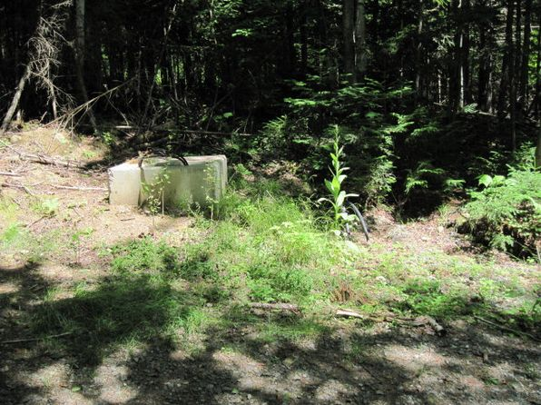 null bed null bath Vacant Land at 00 Terrace Way Lake Placid, NY, 12946 is for sale at 200k - 1 of 6