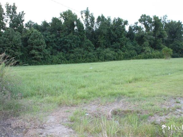 null bed null bath Vacant Land at  Tbd Pamplico Hwy Pamplico, SC, 29583 is for sale at 69k - 1 of 7