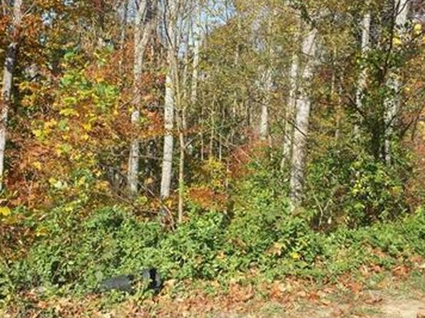 null bed null bath Vacant Land at 108 Luther Cove Rd Candler, NC, 28715 is for sale at 30k - 1 of 5