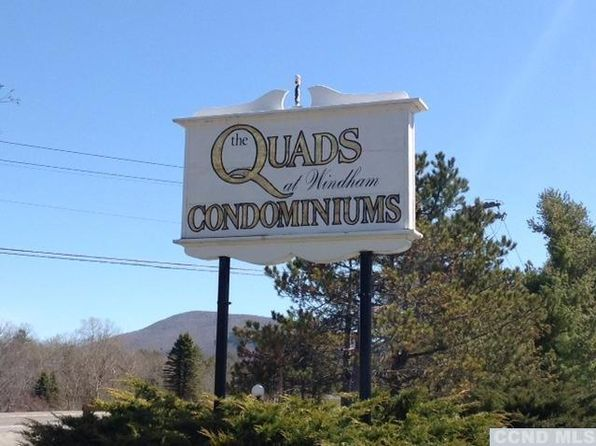 1 bed 1 bath Condo at 9 Quads Way Windham, NY, 12496 is for sale at 79k - 1 of 19