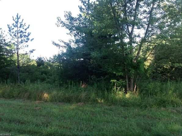 null bed null bath Vacant Land at  ASH ST SEBRING, OH, 44672 is for sale at 14k - 1 of 2