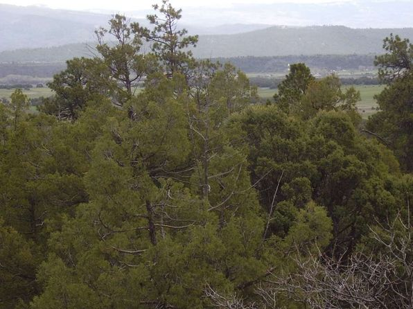 null bed null bath Vacant Land at  Turkey Trail Laguna Vis Tierra Amarilla, NM, 87575 is for sale at 40k - 1 of 6